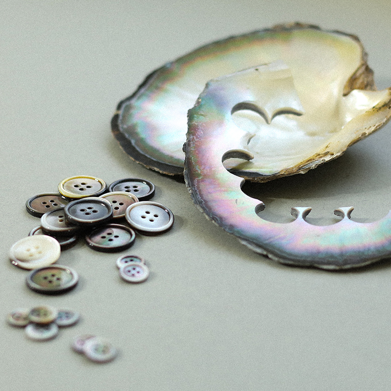 Sustainable mother-of-pearl and shell buttons